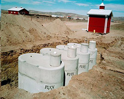 A group of rain barrels set in the ground.