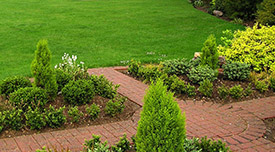 Picture of well manicured lawn